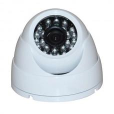 camera MJ-308n10