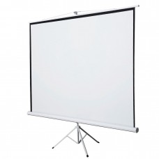 100 projector screen with stand